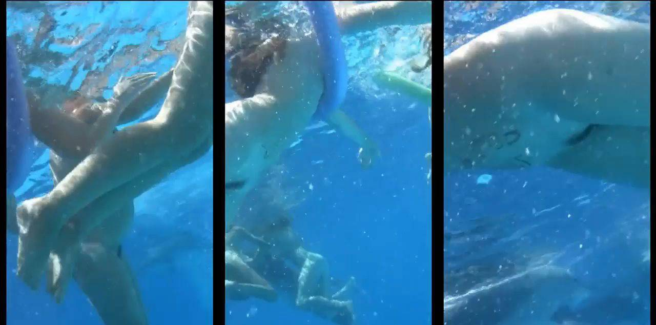 Amazing Dolphin Encounter - 2