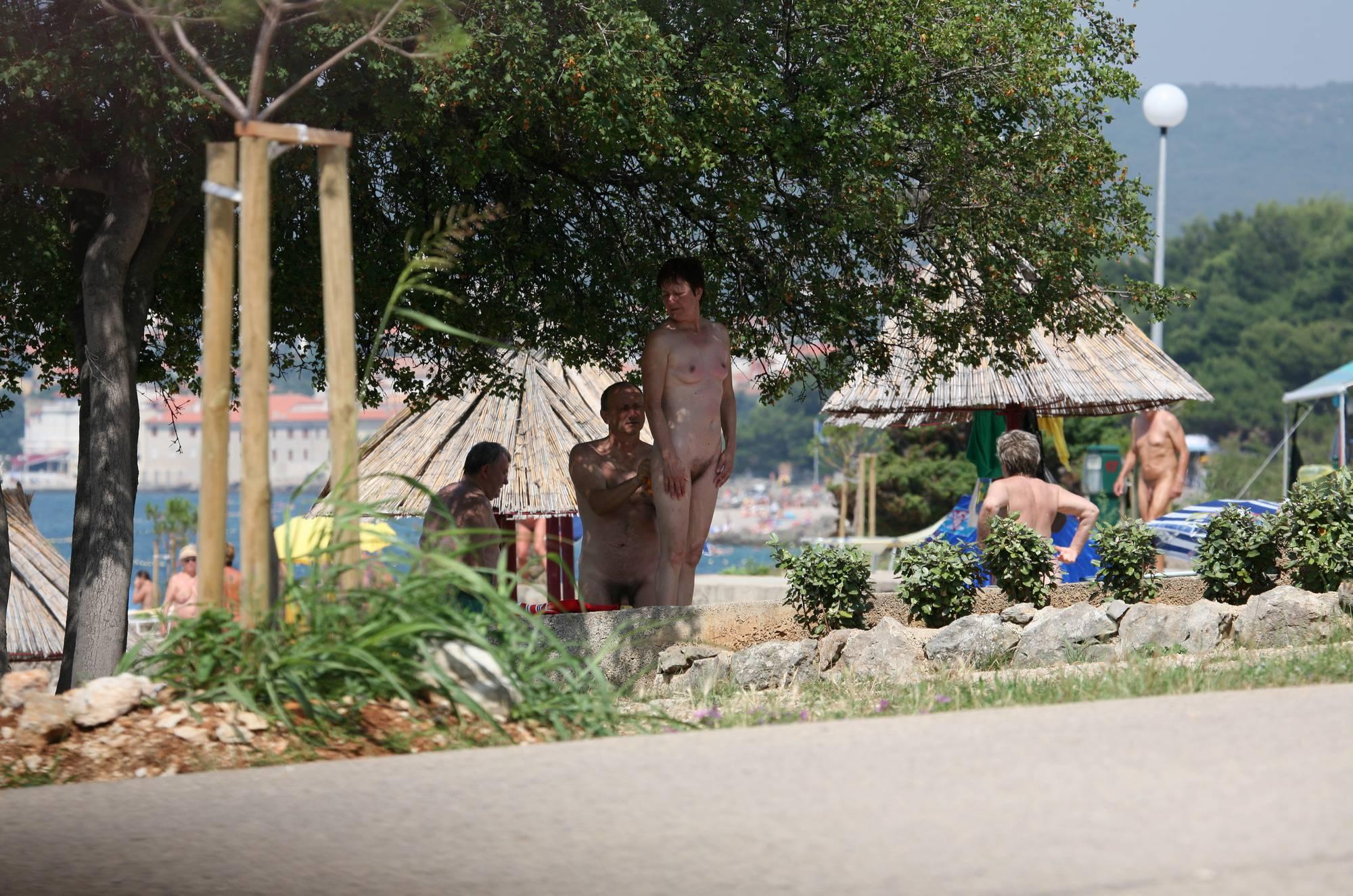 Bondi Beach-Park Grounds - 1