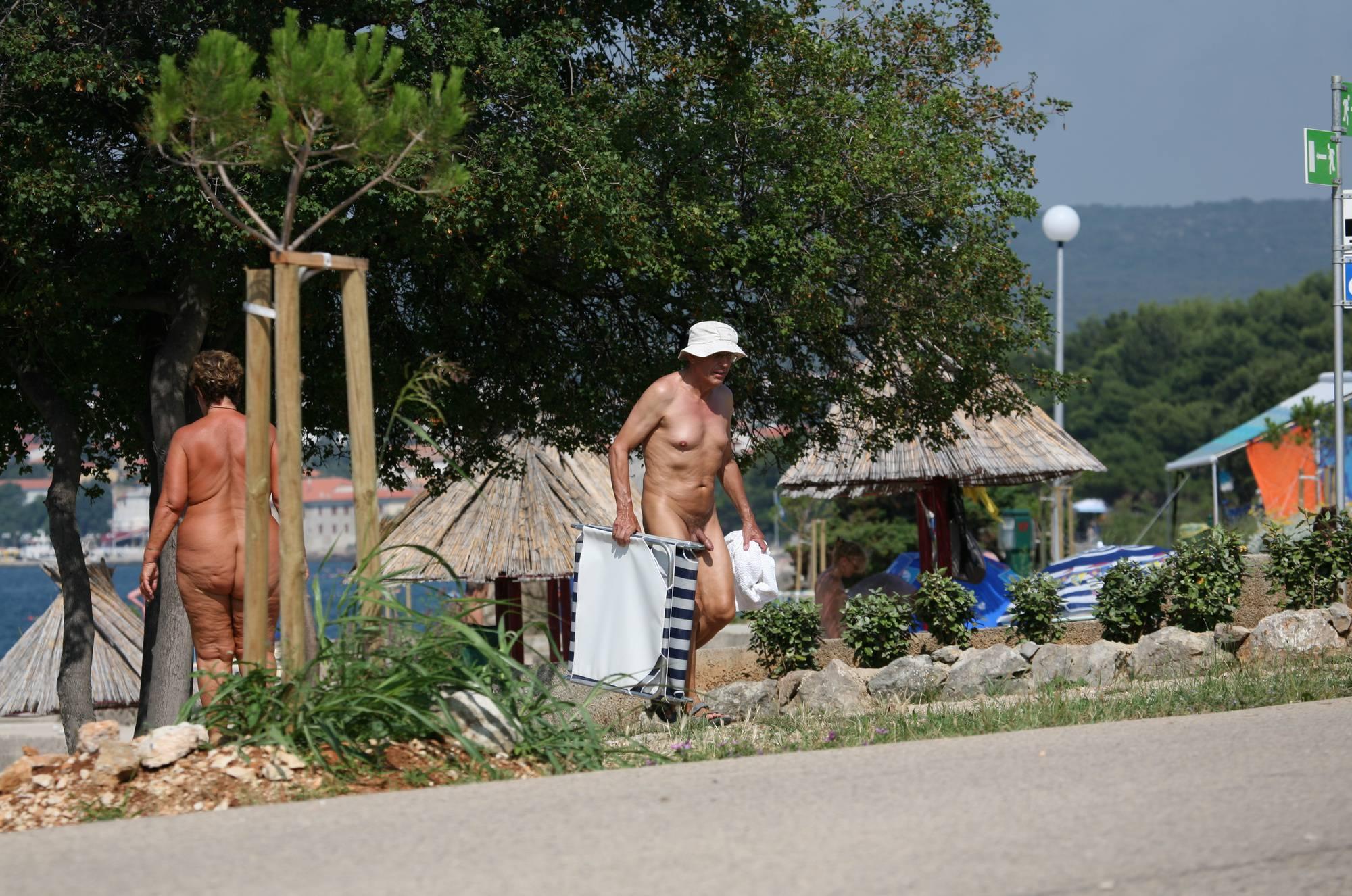 Nudist Gallery Bondi Beach-Park Pass By - 1
