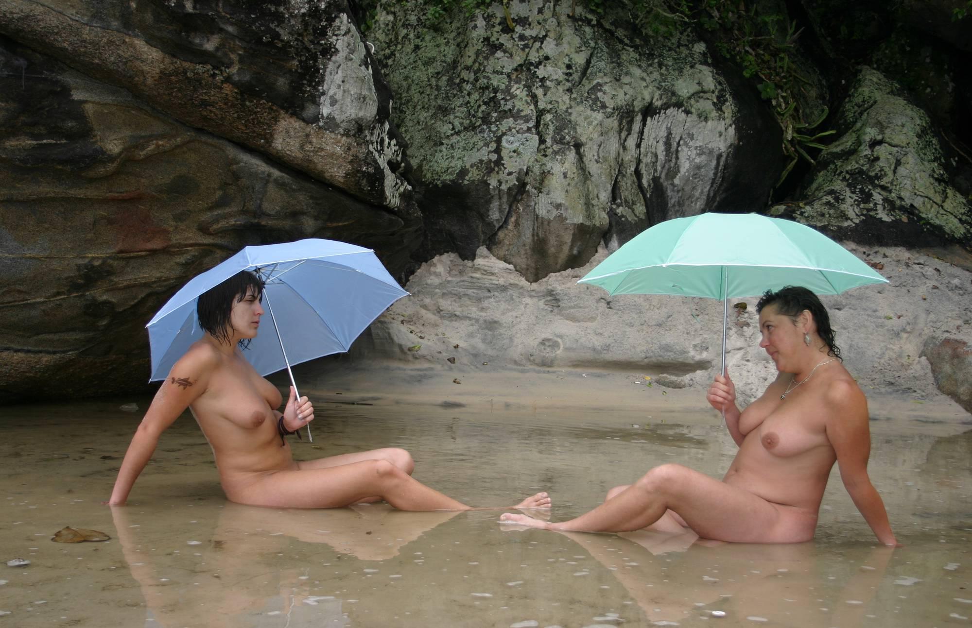 Brazilian Umbrella Profiles - 2