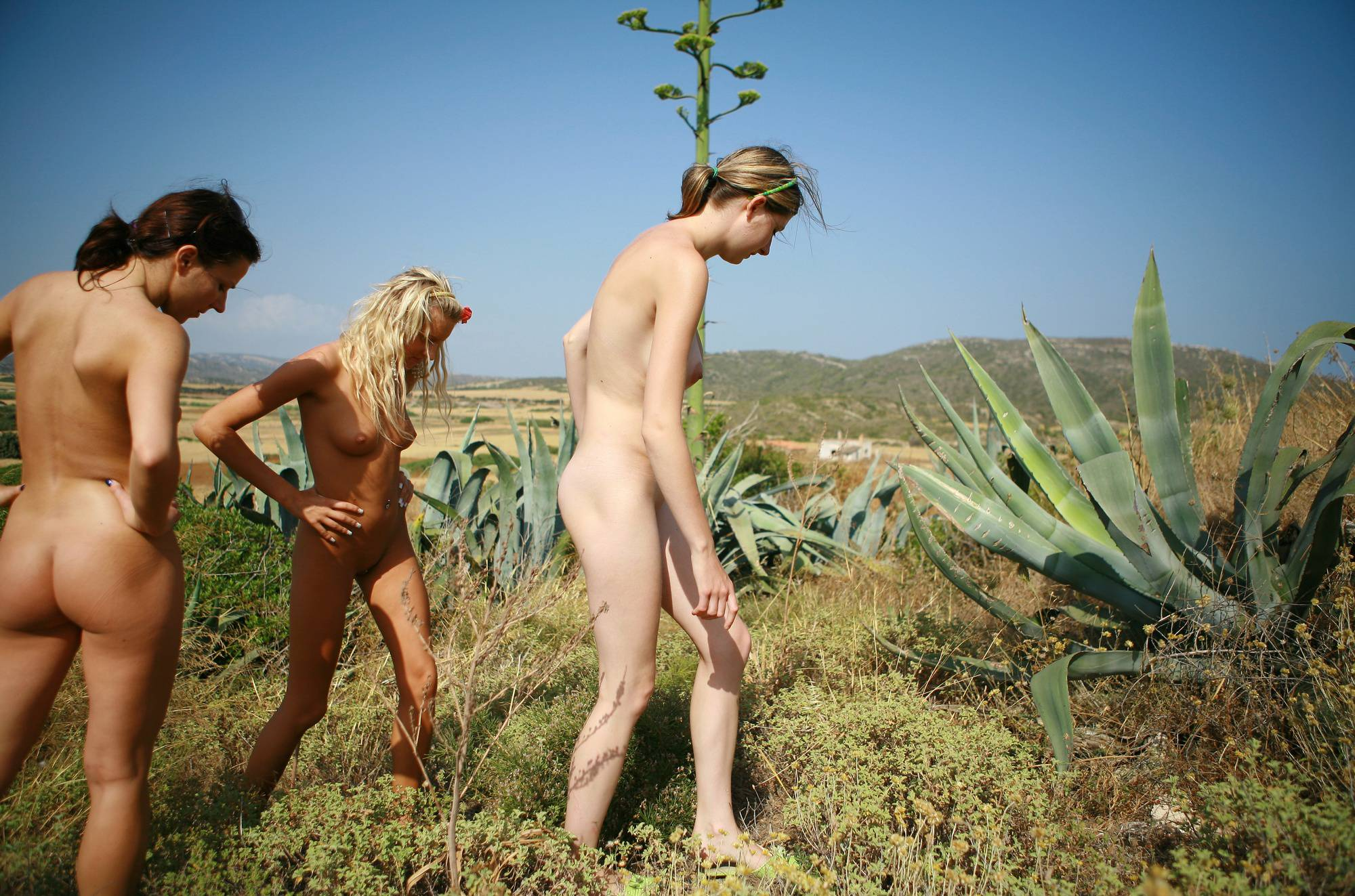 Nudist Pics Greek Cactus Plant Galore - 2