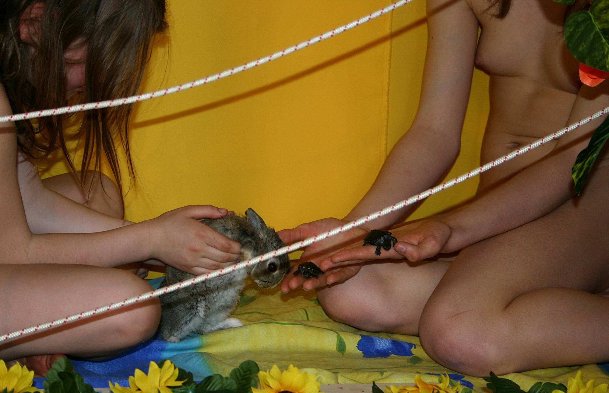 Nudist Pictures In and Out of Spiders Webs - 1