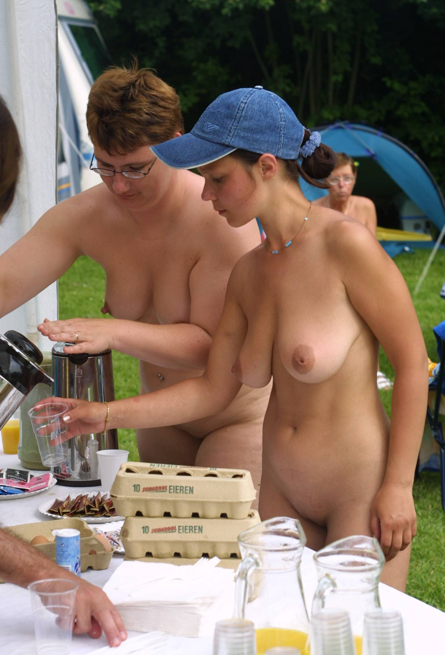 Nudist Pics Holland Picnic Relaxation - 1