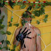 Nested Nudist Animal Play